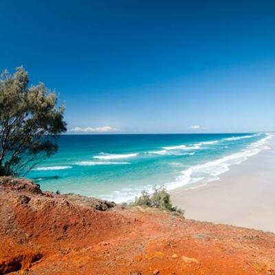 Eastern-Beach-gall