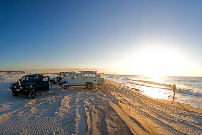 Moreton Island Fishing - Beach