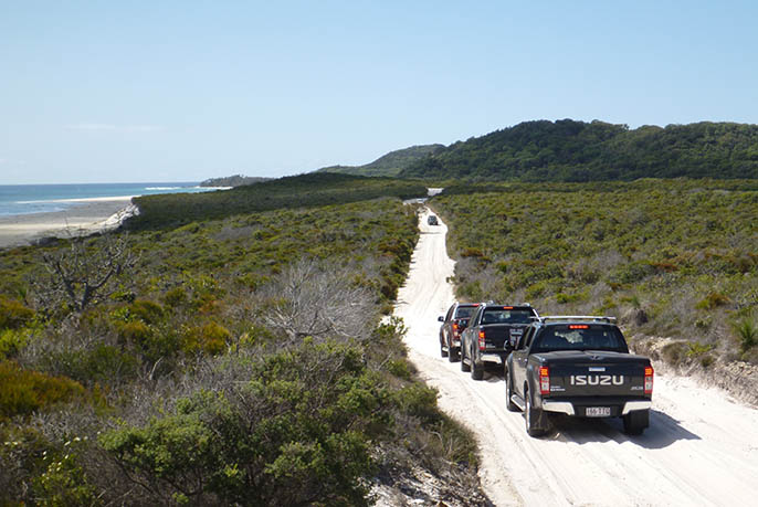 Moreton Island 4WD - ISUZU Tracks Gall