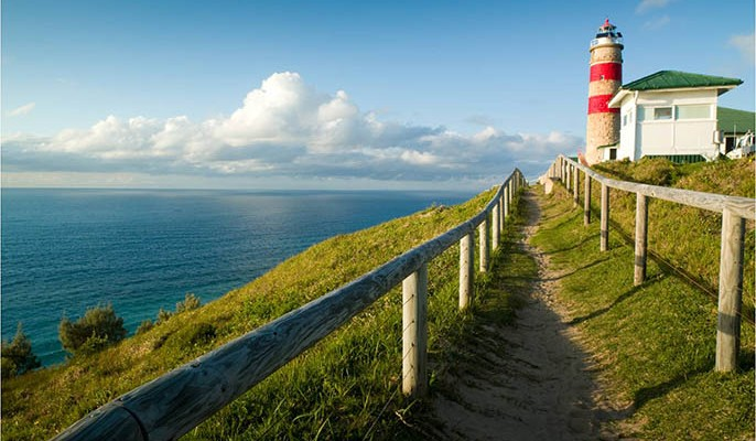 Lighthouse-gall