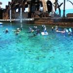 Snorkelling the wrecks on moreton island 1