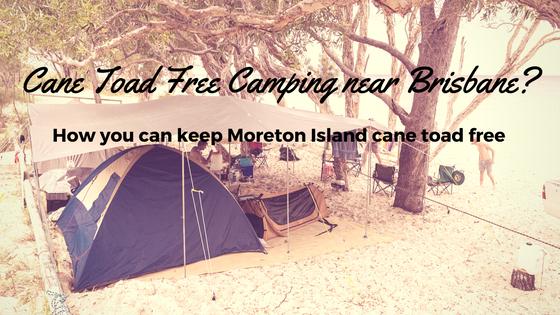 Camping near brisbane